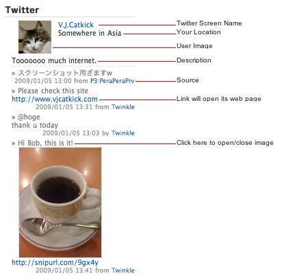 twitt 10 Twitter Plugins That Will Increase Your Wordpress blog