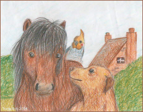 Animals_by_ThistlePuma