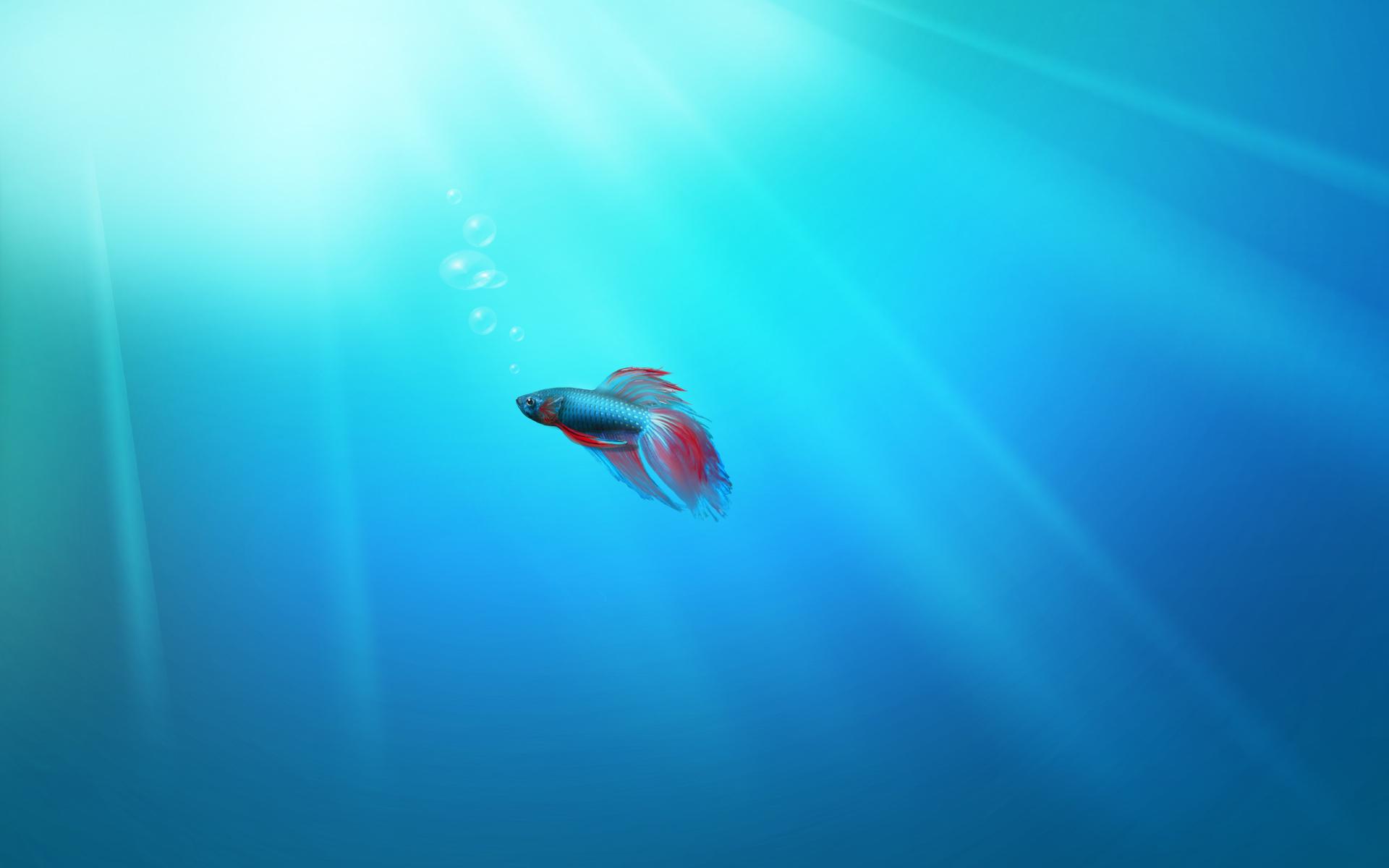 Unduh 7300 Koleksi Wallpaper Animasi Bergerak Windows 7 HD Paling Keren