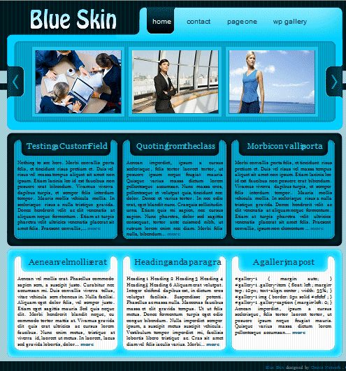 blueskin 101 free premium wordpress themes