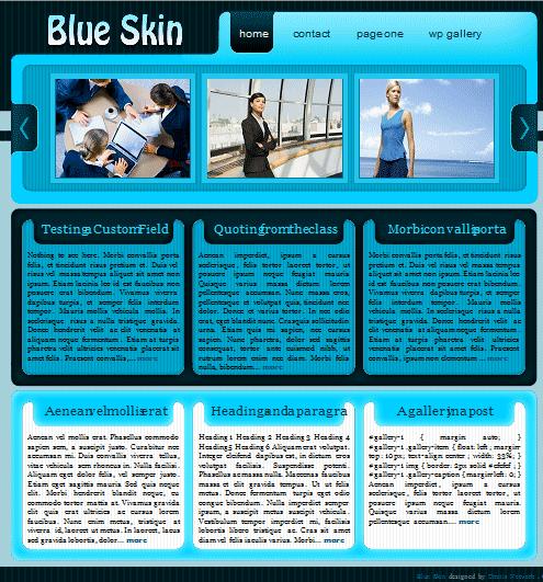 blueskin