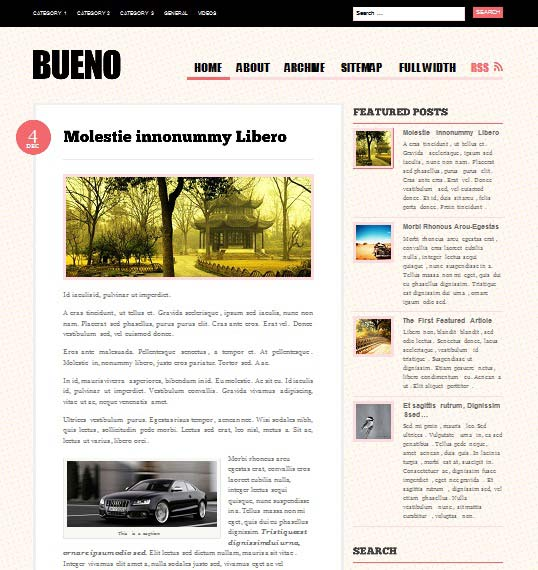 bueno 101 free premium wordpress themes