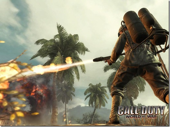 call-of-duty-world-at-war-game-art-picture_1024x768