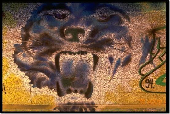 Graffitti068