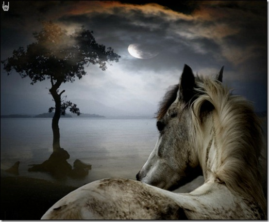 Horse in the dark by FreakingPrincess thumb 40 Beautiful Digital Painted Horses