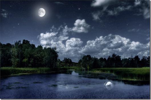 Night_by_Maarel