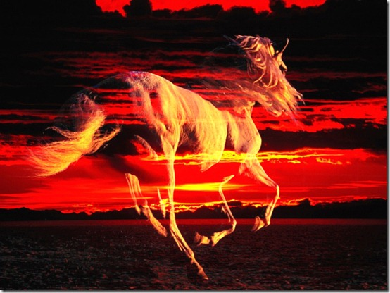 horse spirit thumb 40 Beautiful Digital Painted Horses
