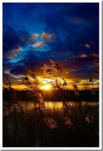 Golden_Sunset____by_XipnosS