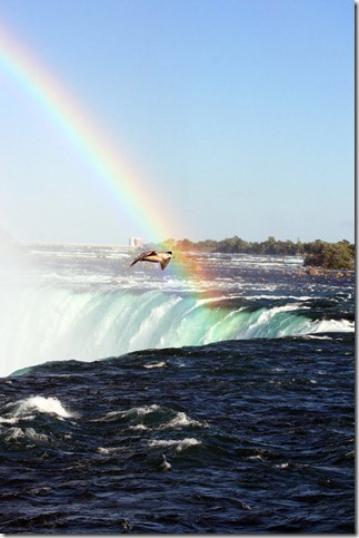 Niagara Falls 2 by rosswillett thumb 40 Amazing photos of Niagara Falls
