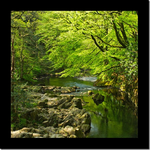 River of Green by scotto thumb 30 Rivers That Will Make You Love Them