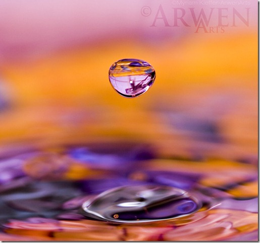 SATELLIT ON MY SPACE by ArwenArts thumb 80 Extraordinary Examples Of Macro Photography