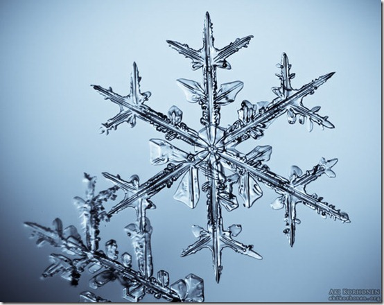 Snowflake   2 by ak87 thumb 80 Extraordinary Examples Of Macro Photography