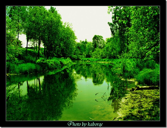 Summer green river by kaborge thumb 30 Rivers That Will Make You Love Them