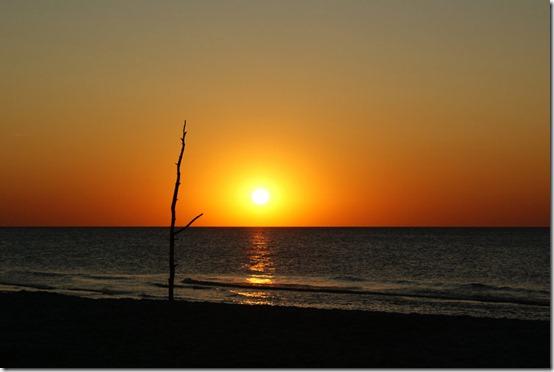 Sunset__by_Ricki_Tiki_Tak
