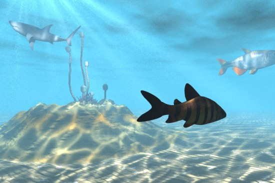 Underwater_by_0Coda