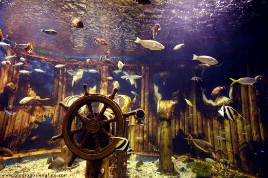 Underwater_by_blackmage9
