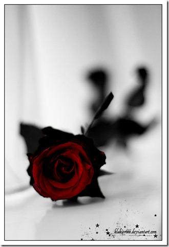 rose_by_klakier666