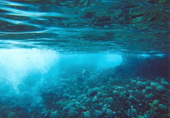 underwater_craziness