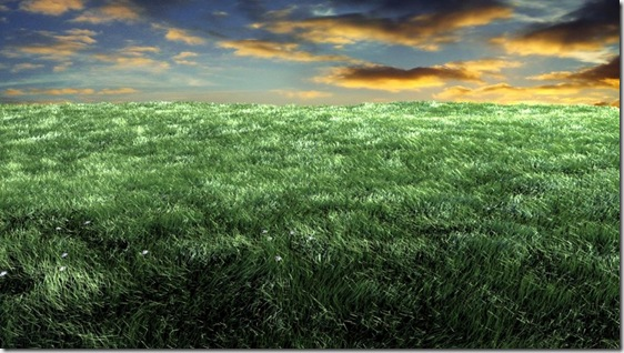 Sky and grass by bebekngepotz thumb Most Beautiful Examples Of Clear 3 Dimensional Art