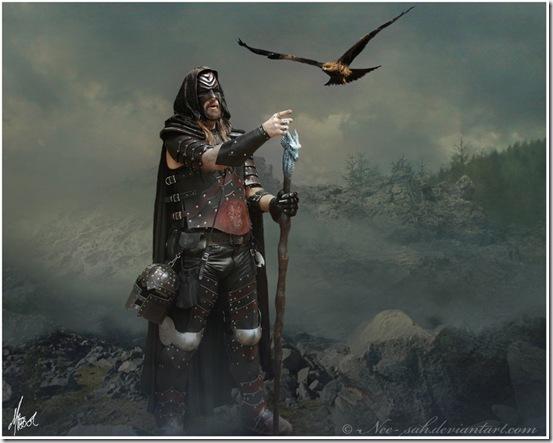 _The_Warrior__by_Nee_sah