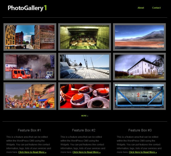 Photo Galler 1 wp premium portofolio template 550x504 8 Professional Wordpess Portfolio Templates