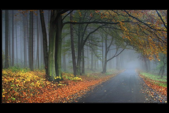 Road The Winter Can Come From by robertmekis 550x366 Road Perfection