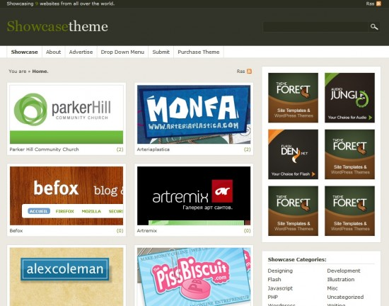 Showcase wp premium portofolio template