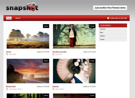 Snapshot wp premium template