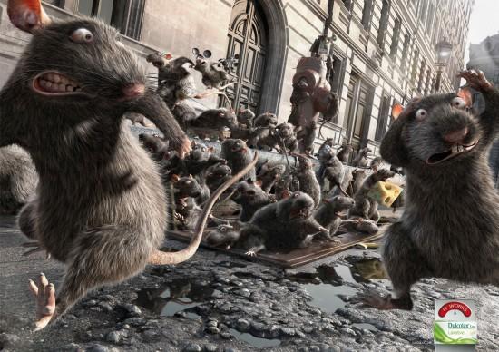 Dulcolax Rats