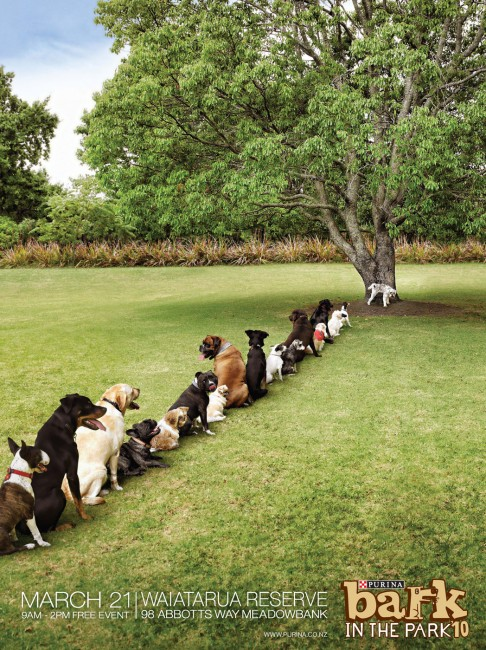 Purina Bark in the Park Tree