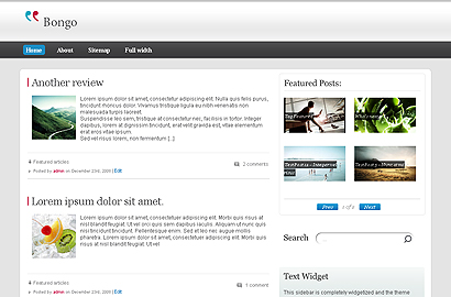 bongo small 31 Premium Wordpress Themes