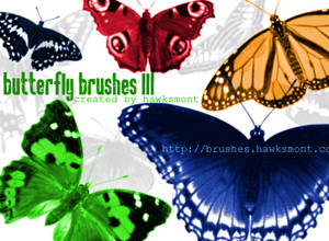 butterfly3 brushes by hawksmont300 20 Beautiful Photoshop Brushes That Will Make Your Work In Photoshop Easier