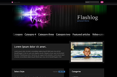 flashlog small 31 Premium Wordpress Themes