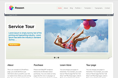 reason small 31 Premium Wordpress Themes