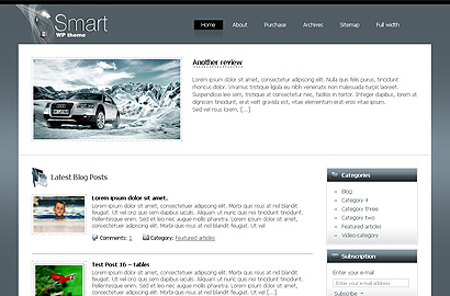 smart small 31 Premium Wordpress Themes