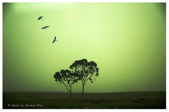 Green_day_by_tachsheet_Jeulian