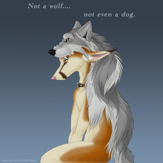 Not a wolf    by IceKrystal 550x550 42 Well Painted Wolfs
