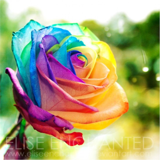 Over_the_rainbow_by_EliseEnchanted