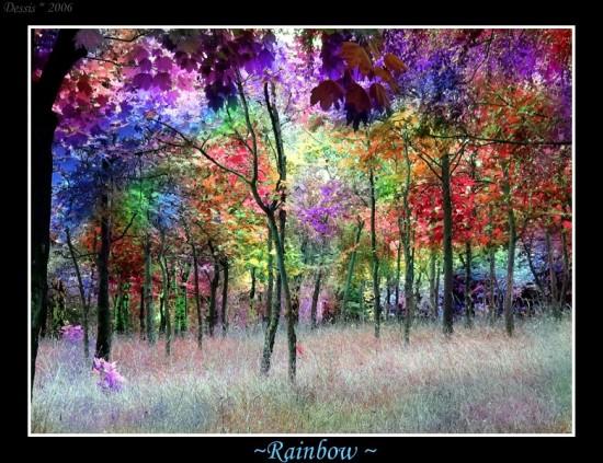 Rainbow_by_Dehearted