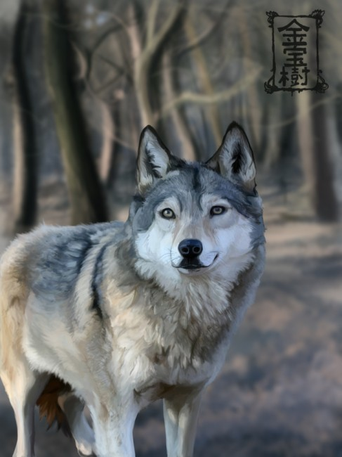 The Wolf by Kinpouju 487x650 42 Well Painted Wolfs