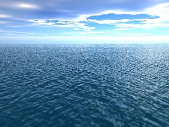 New, Wonderful Ocean Inspirations