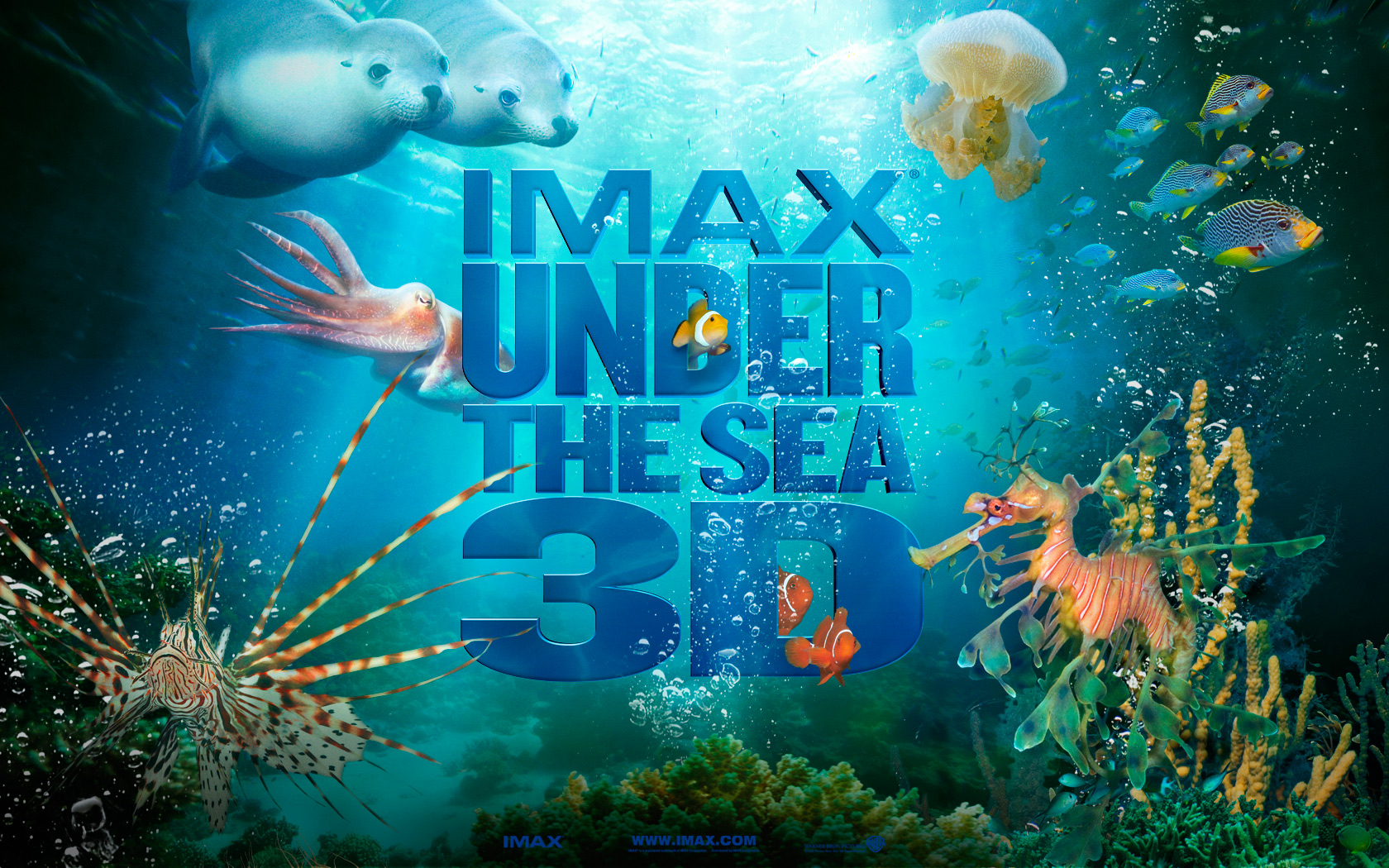 42 under the sea wallpapers