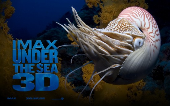 Under_the_Sea_3D_Wallpaper_2_1280