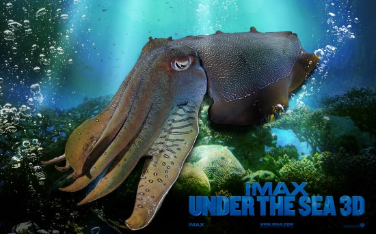 Under_the_Sea_3D_Wallpaper_5_1280