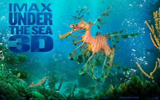 Under_the_Sea_3D_Wallpaper_6_1280