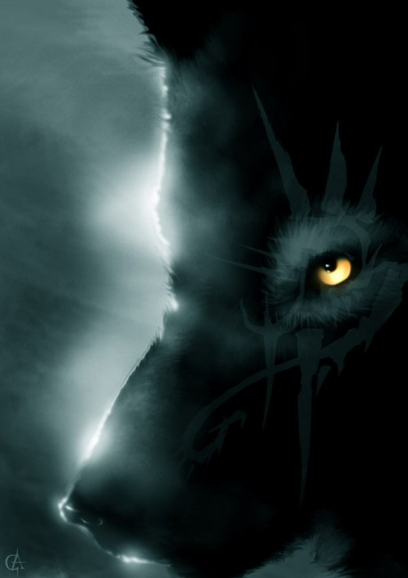 Wolf   by Knarf2Gondolin 459x650 42 Well Painted Wolfs