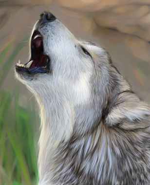 Wolf by AlexisSalcedo 42 Well Painted Wolfs