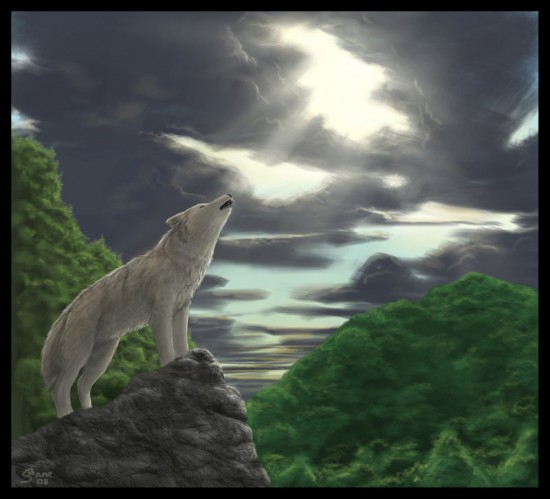 Wolf by Temiree 550x499 42 Well Painted Wolfs