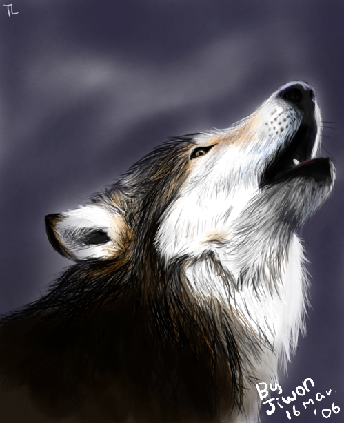 Wolf by Tiel 42 Well Painted Wolfs