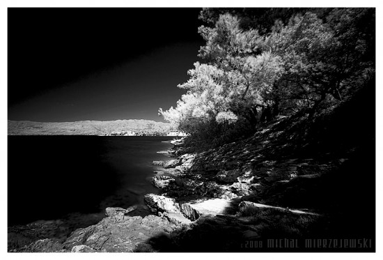 black and white by werol 550x373 Stuning Black And White Photo Manipulations